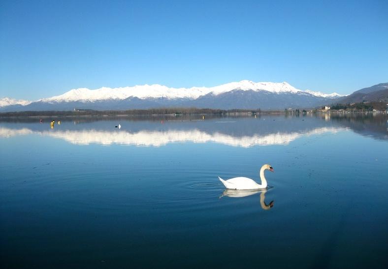 Nel lago di viverone si pu fare il bagno la provincia - Varicella si puo fare il bagno ...