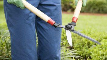 giardiniere colpito