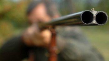 punta fucile