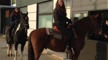 A cavallo al Mc Drive