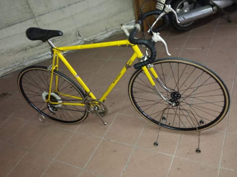 Bicicletta Da Corsa La Provincia Di Biella