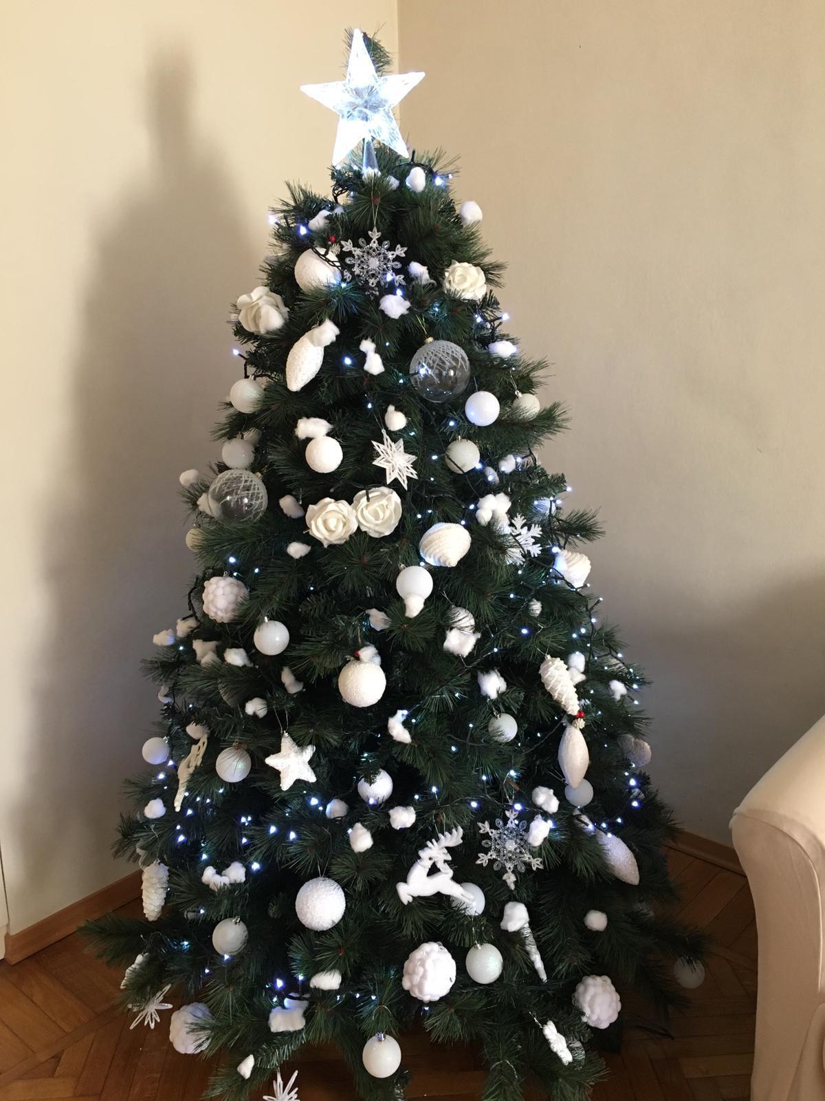 Foto E Auguri Di Buon Natale.34464299 Tanti Auguri Di Buon Natale Da Alessandro E Bruna E Al